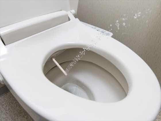 Douche WC: mogelijkheden, prijzen en merken